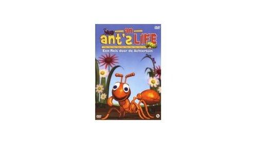 DVD Kinderfilms