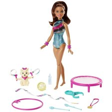 Barbie Dreamhouse Adventures Teresa pop + Puppy en Accessoires