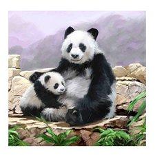 Craft Buddy Crystal Art Kaart Pandaberen 18x18 cm