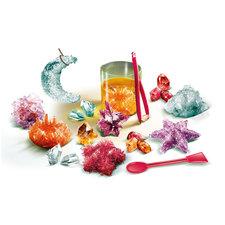 Clementoni Wetenschap en Spel Zelf Kristallen Maken