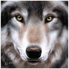 Craft Buddy Crystal Art Wolf 30x30 cm