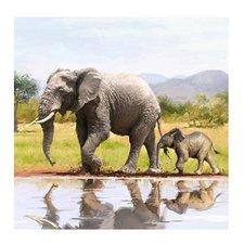 Craft Buddy Crystal Art Kaart Olifanten 18x18 cm