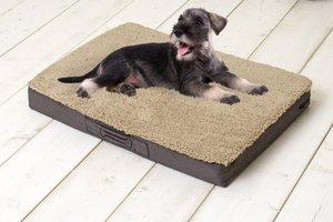 Sun Garden Buddy Orthopedisch Hondenkussen 100x65x10cm Beige